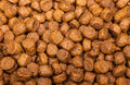 Dog food or cat close up Royalty Free Stock Image