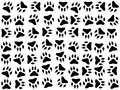 Dog footprints vector background illustrated on white Royalty Free Stock Photo