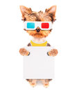 Dog going to the movies with banner holding white paper Stock Image