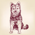 Dog hand drawn vector illustration sketch Royalty Free Stock Photo