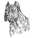 Dog head in profil vector hand drawing illustration