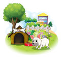 A dog and his doghouse inside the fence illustration of on white background Stock Photo