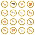 Dog icon circle