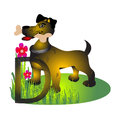 Dog illustration of isolated animal alphabet d with puppy Stock Photo