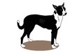 Dog illustration of a with white background Stock Images