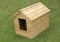 Dog kennel a brand new wooden on a grass lawn Royalty Free Stock Image