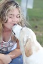 Dog kiss young woman companion best friend love kissing Royalty Free Stock Photos