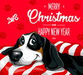 Dog. Merry Christmas and a Happy New Year 2018. Happy, funny puppy