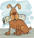 Dog with newspaper Royalty Free Stock Photo