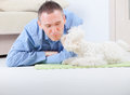 Dog and owner little maltese laying with his on the floor in home Royalty Free Stock Image