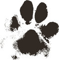 Dog paw print Royalty Free Stock Photo