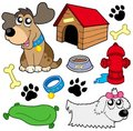 Dog pictures collection Royalty Free Stock Photo
