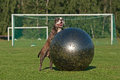 Dog play with ball olde english bulldog male a large playing football Royalty Free Stock Image