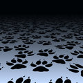 Dog prints Stock Images