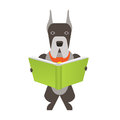 Dog read illustration of a on a white background Royalty Free Stock Photo