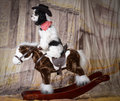 Dog riding a horse rocking american cocker spaniel puppy Royalty Free Stock Photo