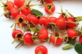 Dog rose red sappy fresh berries with green leaves Stock Photo