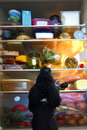 Dog's wonderland, an open fridge Royalty Free Stock Photo
