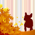 Dog silhouette and leaf Royalty Free Stock Photos