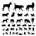 Dog silhouettes set Stock Image
