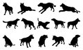 Dog silhouettes a set of pet including the playing jumping and walking Royalty Free Stock Images
