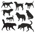 Dog Silhouettes vector Royalty Free Stock Photo