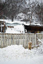 Dog in snow photo of a barking the near at wooden fence Stock Photography