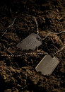 Dog Tags Royalty Free Stock Photography