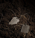Dog Tags Royalty Free Stock Images