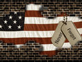 Dog tags on flag Royalty Free Stock Photos