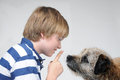 Dog teacher boy and his playing together Royalty Free Stock Photography