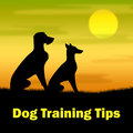 Dog Training Tips Means Puppy Doggy And Teaching