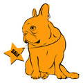Dog vector breed cute pet animal bulldog french