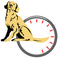 Dog with wag-o-meter Royalty Free Stock Photos
