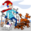 Dog walker the is walking multiple dogs in the winter time Royalty Free Stock Photo