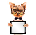 Dog wearing a neck bow with tablet pc cute puppy holding blank Stock Image