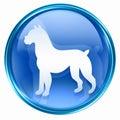 Dog Zodiac icon blue Royalty Free Stock Photo