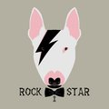 Doggy rockstar vector illustration isolated on grey background Royalty Free Stock Photo