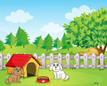 A doghouse inside the wooden fence near the hill Royalty Free Stock Image