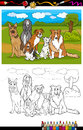 Dogs breeds cartoon for coloring book illustration of funny purebred like german shepherd collie dalmatian basset hound afghan Stock Photo