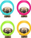 Dogs with circle set of four dog colored in muzzle Royalty Free Stock Photos