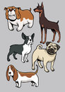 Dogs collection part vector of all are separated Royalty Free Stock Photo