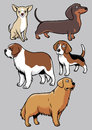 Dogs collection part vector of all are separated and ready to use Stock Photography