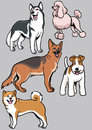 Dogs collection part vector of all are separated and ready to use Royalty Free Stock Photo