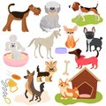 Dogs of different breeds, puppy set cute pets, vector illustration. Funny animals cartoon characters, playful puppy