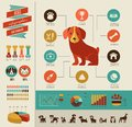 Dogs infographic and icon set infographics vector illustration Royalty Free Stock Image