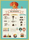 Dogs infographic and icon set infographics vector illustration Stock Photography
