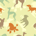 Dogs seamless pattern various colorful Royalty Free Stock Photos