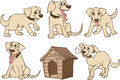 Dogs set of illustrations of cute funny Stock Images