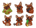 6 dogs. Set of vector emotional animals. stylization. Stickers f